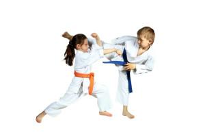Karate-Kids (ab 8 Jahren) @ SG-Halle | Dietzenbach | Hessen | Deutschland